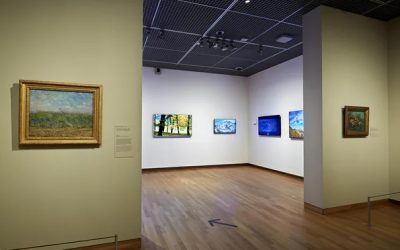 The Van Gogh Museum in Amsterdam opens a position for a Conservation scientist – Deadline June 1, 2021